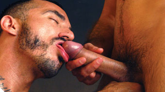 top_king-michael-lucas-dominates-alessio-romero
